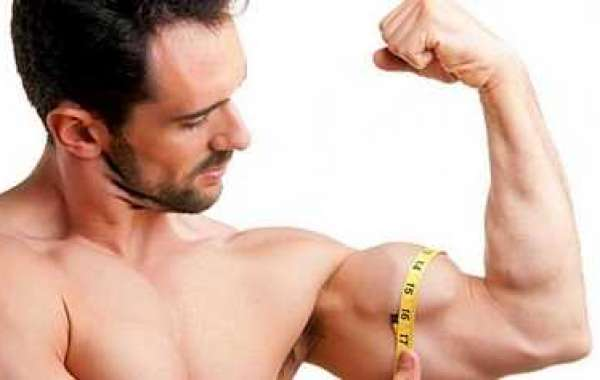 Precisely how to Build Lean muscle With regard to Slim Man