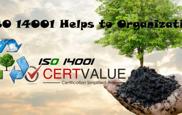 Questions to successfully perform ISO 14001 top management audit