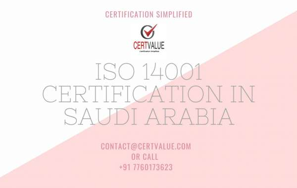 Do you need a consultant for the implementation of ISO 14001?