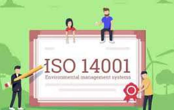 How to structure ISO 14001 documentation?