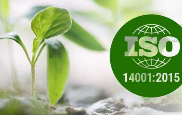 What to include in risk management methodology according to ISO 14001